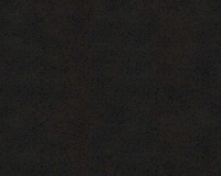 A.S. Création Versace 4 #93591-4 gyapjú tapéta vinil felülettel